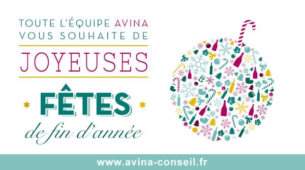 Vœux 2015 - Avina Conseil